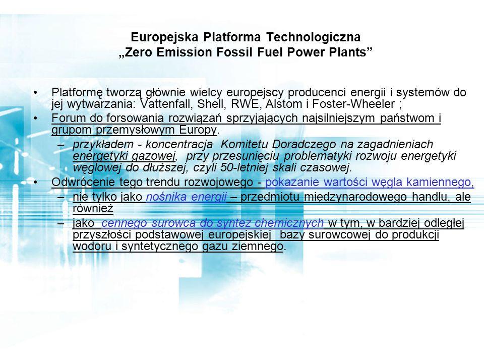 """Europejska Platforma Technologiczna """"Zero Emission Fossil Fuel Power Plants Platformę tworzą głównie wielcy europejscy producenci energii i systemów do jej wytwarzania: Vattenfall, Shell, RWE, Alstom i Foster-Wheeler ; Forum do forsowania rozwiązań sprzyjających najsilniejszym państwom i grupom przemysłowym Europy."""
