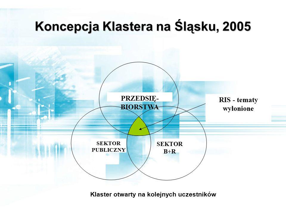 Koncepcja Klastera na Śląsku, 2005 RIS - tematy wyłonione PRZEDSIĘ- BIORSTWA SEKTOR PUBLICZNY SEKTOR B+R Klaster otwarty na kolejnych uczestników