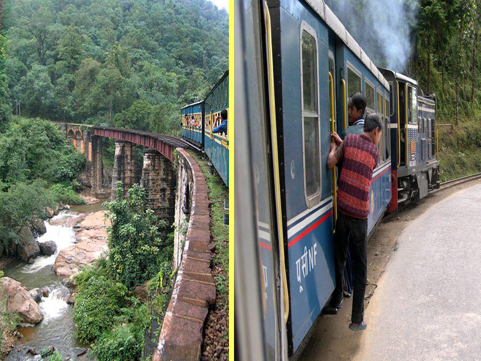 Kolej wąskotorowa o szerokości /2 stóp (610 mm) /po której porusza się pociąg o pseudonimie Toy Pociąg , relacji Siliguri do Darjeeling w Bengalu Zachodniego, prowadzona przez koleje indyjskie.