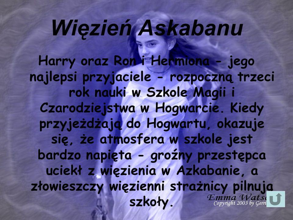 Więzień Askabanu Harry oraz Ron i Hermiona - jego najlepsi przyjaciele - rozpoczną trzeci rok nauki w Szkole Magii i Czarodziejstwa w Hogwarcie. Kiedy