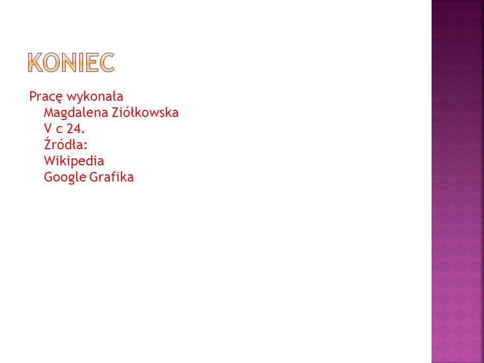 Pracę wykonała Magdalena Ziółkowska V c 24. Źródła: Wikipedia Google Grafika