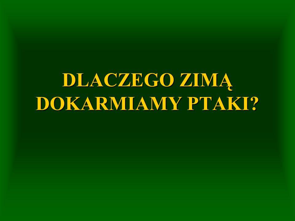[Kruszewicz 2005] SĄ LEKARZAMI DRZEW ALE TEŻ...