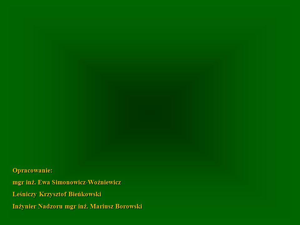 Opracowanie: mgr inż. Ewa Simonowicz-Woźniewicz Leśniczy Krzysztof Bieńkowski Inżynier Nadzoru mgr inż. Mariusz Borowski