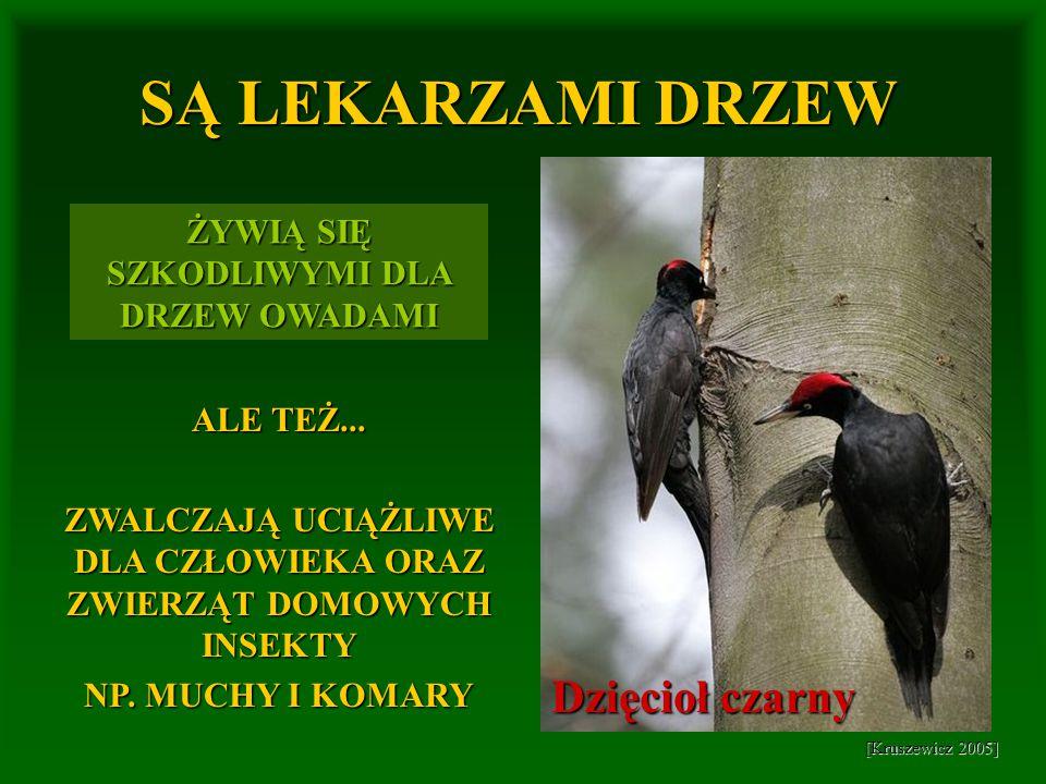 [Kruszewicz 2005] [http://www.zielonalekcja.pl] [http://21wdhy.czuwaj.net] [http://digart.img.digart.pl] PTAKI ZWIĄZANE Z WODĄ Mandarynki Łabędzie Kaczki krzyżówki Łyski