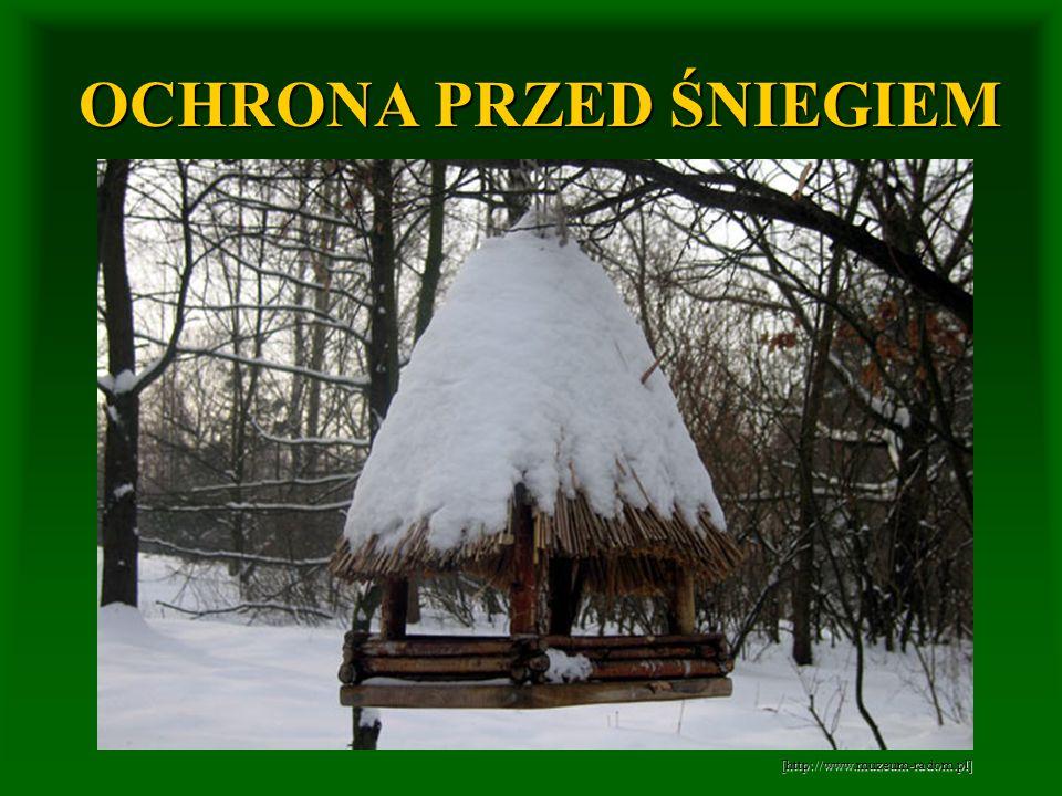 OCHRONA PRZED ŚNIEGIEM [http://www.muzeum-radom.pl]