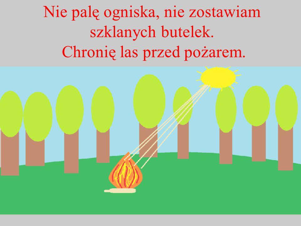 Nie palę ogniska, nie zostawiam szklanych butelek. Chronię las przed pożarem.