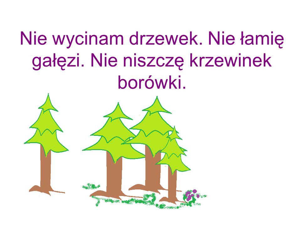 Nie deptam grzybów.Są elementem ekosystemu. Stanowią pożywienie mieszkańców lasu.