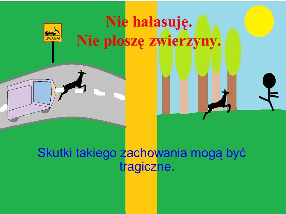 Nie niszczę mrowiska. Mrówki są nie tylko pracowite ale i niezbędne dla ekosystemu leśnego.