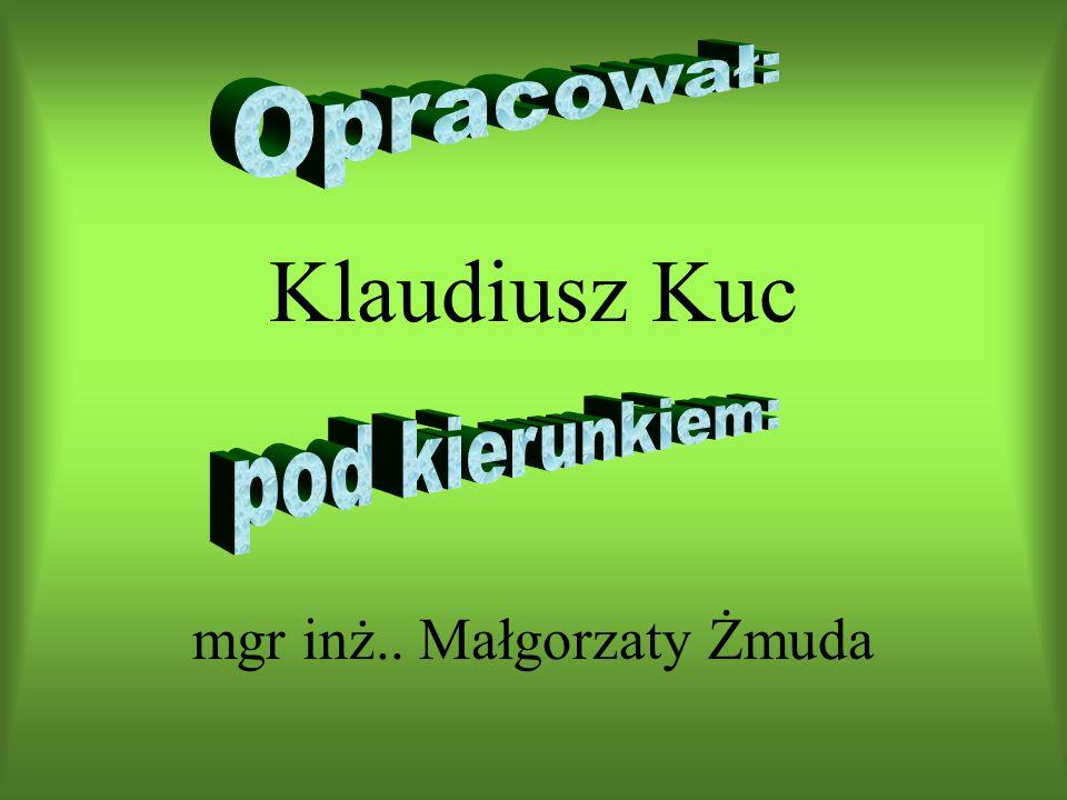 Klaudiusz Kuc mgr inż.. Małgorzaty Żmuda