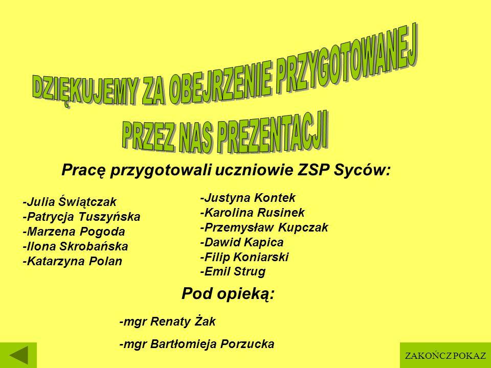 Pracę przygotowali uczniowie ZSP Syców: -Julia Świątczak -Patrycja Tuszyńska -Marzena Pogoda -Ilona Skrobańska -Katarzyna Polan -Justyna Kontek -Karol
