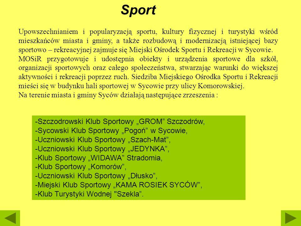 Sport Upowszechnianiem i popularyzacją sportu, kultury fizycznej i turystyki wśród mieszkańców miasta i gminy, a także rozbudową i modernizacją istnie