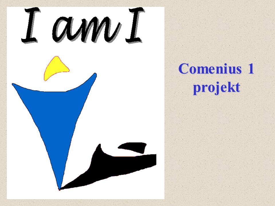 Comenius 1 projekt