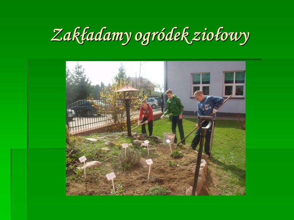 Zakładamy ogródek ziołowy Zakładamy ogródek ziołowy