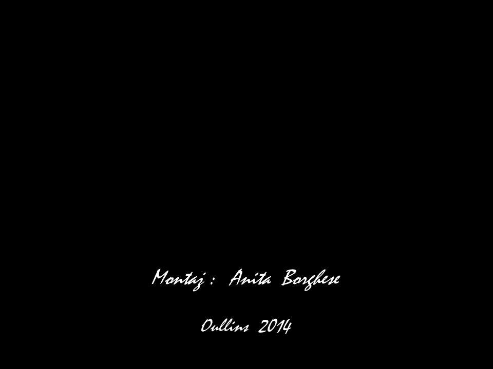 Montaż : Anita Borghese Oullins 2014