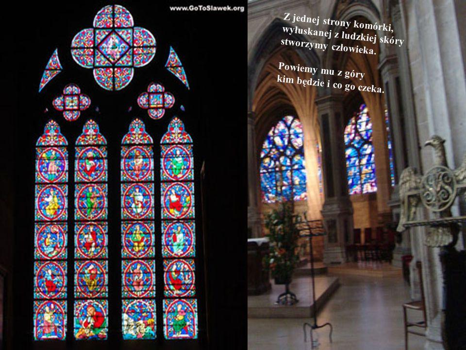 all pictures were taken in Paris – Notre Dame Summer 2004 r.