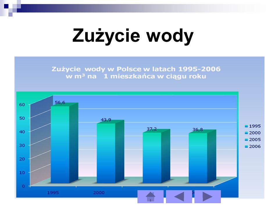 Zużycie wody w gminie Nowe Skalmierzyce w latach 2008 i 2009 Rok 2008Rok 2009 Całkowite zużycie wody153 600 m 3 157 100 m 3 Gospodarstwa domowe112 000 m 3 129 600 m 3 Na cele produkcyjne5 400 m 3 5 600 m 3 Na pozostałe cele14 200 m 3 14 900m 3 Na jednego mieszkańca33 m 3 38 m 3
