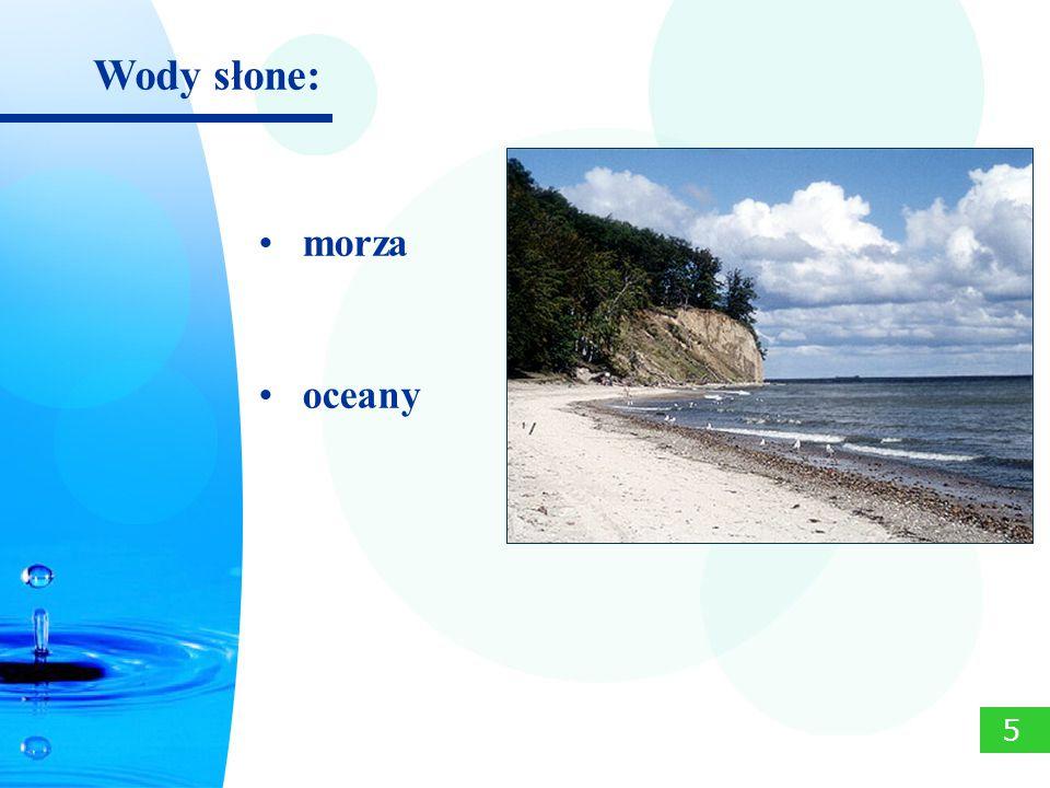 Wody słone: 5 morza oceany