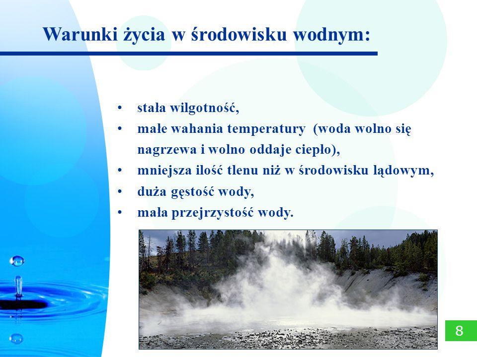 stała wilgotność, małe wahania temperatury (woda wolno się nagrzewa i wolno oddaje ciepło), mniejsza ilość tlenu niż w środowisku lądowym, duża gęstoś