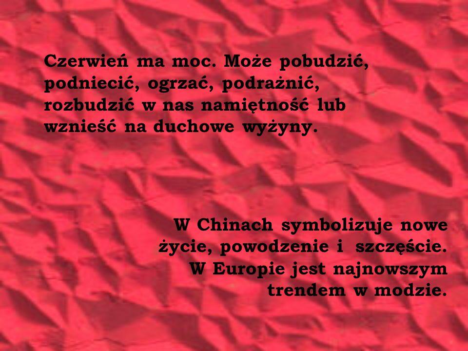 w modzie W reklamiei Agnieszka Trokowska Wydział Dziennikarstwa i Nauk Politycznych