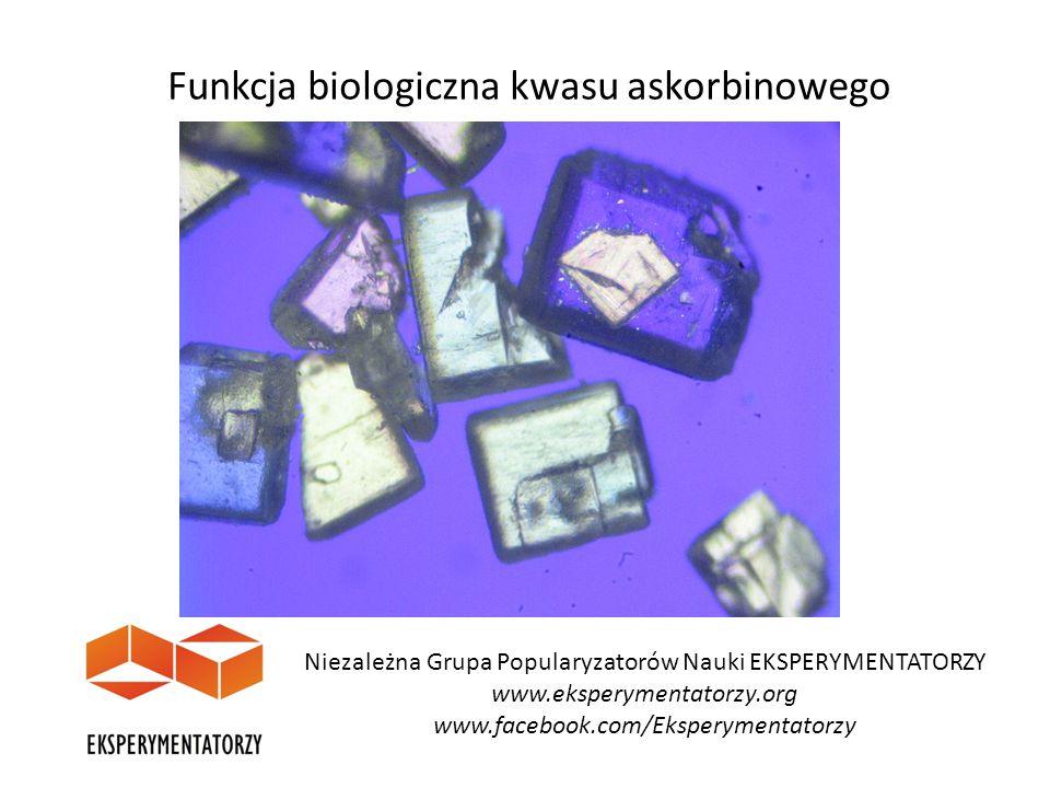 Funkcja biologiczna kwasu askorbinowego Niezależna Grupa Popularyzatorów Nauki EKSPERYMENTATORZY www.eksperymentatorzy.org www.facebook.com/Eksperymen