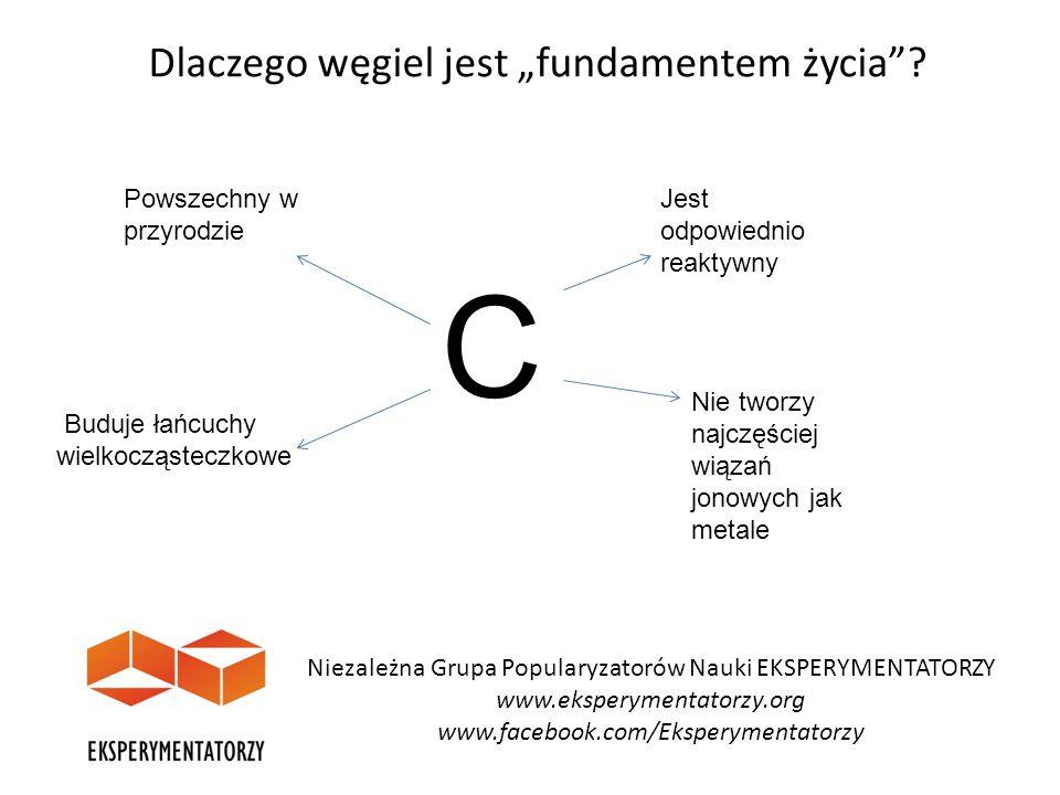 """Dlaczego węgiel jest """"fundamentem życia""""? Niezależna Grupa Popularyzatorów Nauki EKSPERYMENTATORZY www.eksperymentatorzy.org www.facebook.com/Eksperym"""