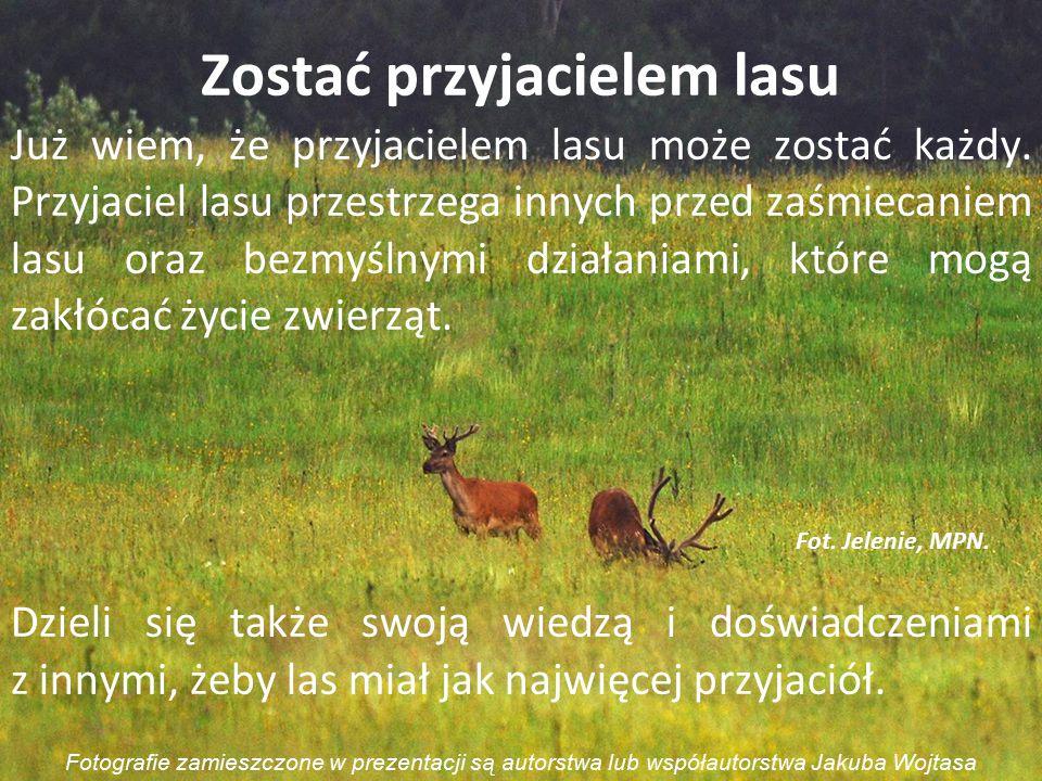 Już wiem, że przyjacielem lasu może zostać każdy. Przyjaciel lasu przestrzega innych przed zaśmiecaniem lasu oraz bezmyślnymi działaniami, które mogą