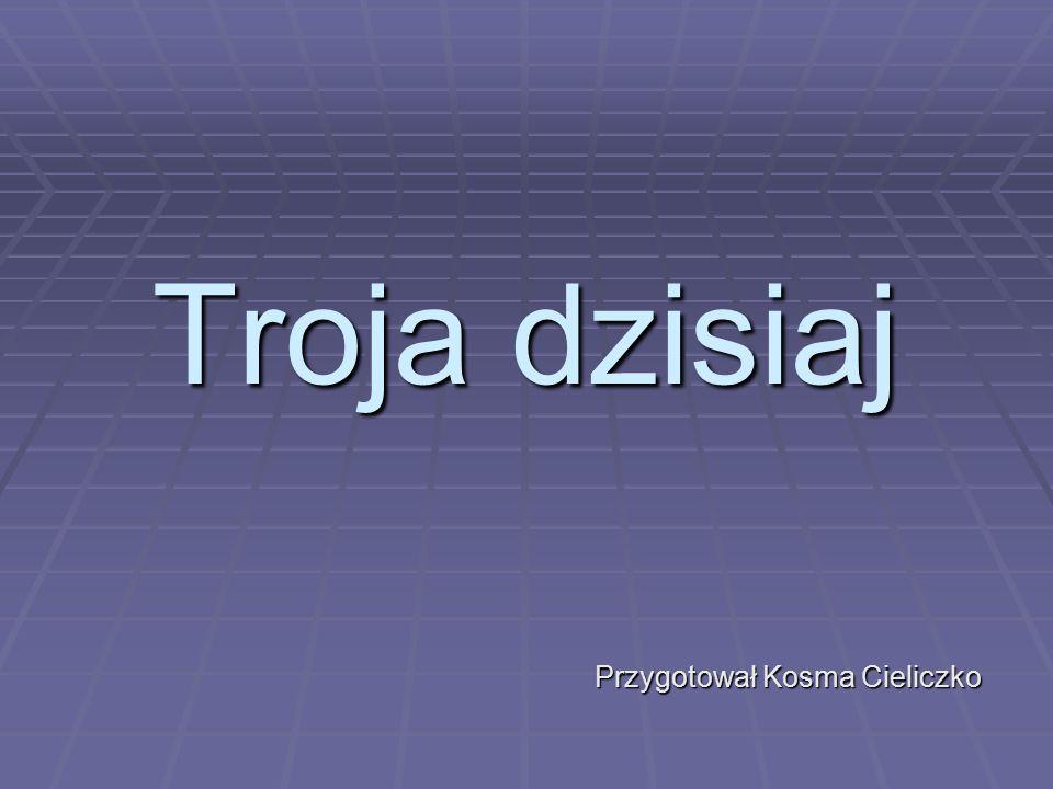 Wyszukano 23.04.2014 w: http://mala-ojczyzna.blog.onet.pl/2008/04/05/troja- ilion-turcja-2007/http://mala-ojczyzna.blog.onet.pl/2008/04/05/troja- ilion-turcja-2007/