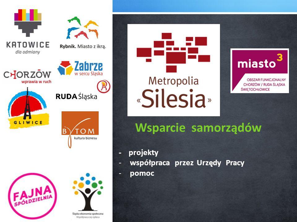 Wsparcie samorządów - projekty -współpraca przez Urzędy Pracy - pomoc