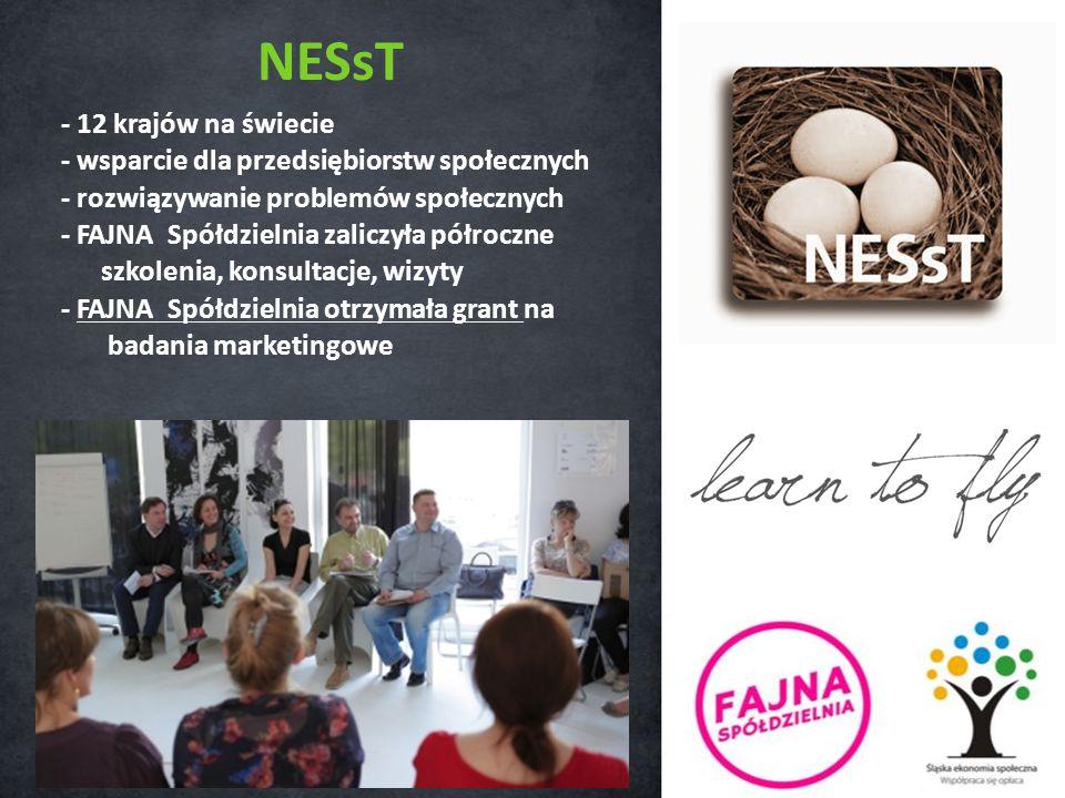 NESsT - 12 krajów na świecie - wsparcie dla przedsiębiorstw społecznych - rozwiązywanie problemów społecznych - FAJNA Spółdzielnia zaliczyła półroczne szkolenia, konsultacje, wizyty - FAJNA Spółdzielnia otrzymała grant na badania marketingowe