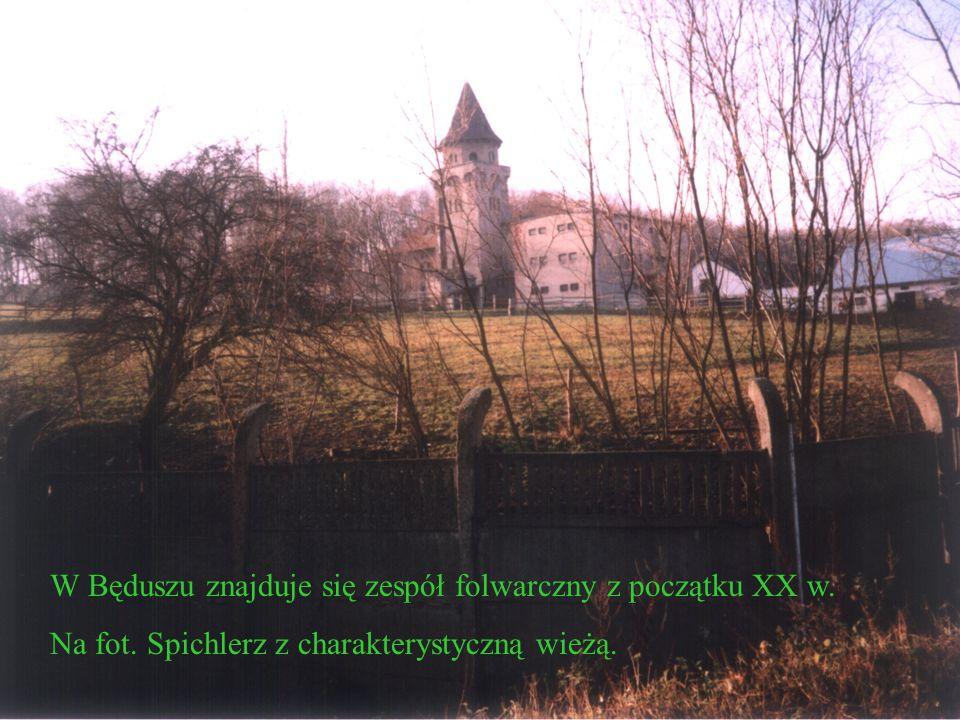 W czasie powstania styczniowego, w Mrzygłodzie miała miejsce bitwa z wojskami rosyjskimi.