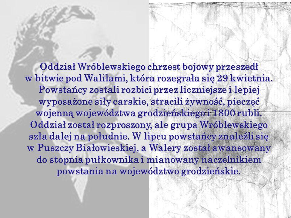 Walery Wróblewski zaangażował się w działalność konspiracyjną, współpracował m.in. z Konstantym Kalinowskim, wydając wraz z nim gazetę