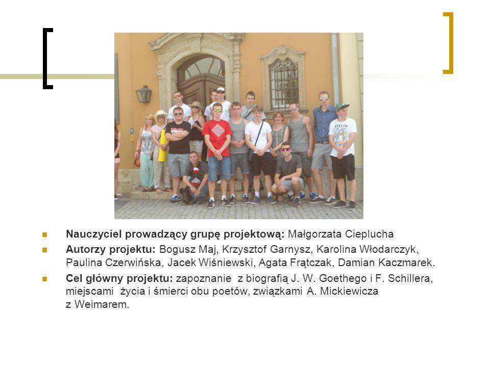 Opis realizacji projektu: Uczniowie Zespołu Szkół Ponadgimnazjalnych nr 15 odbywali staż zawodowy w Weimarze, w dn.