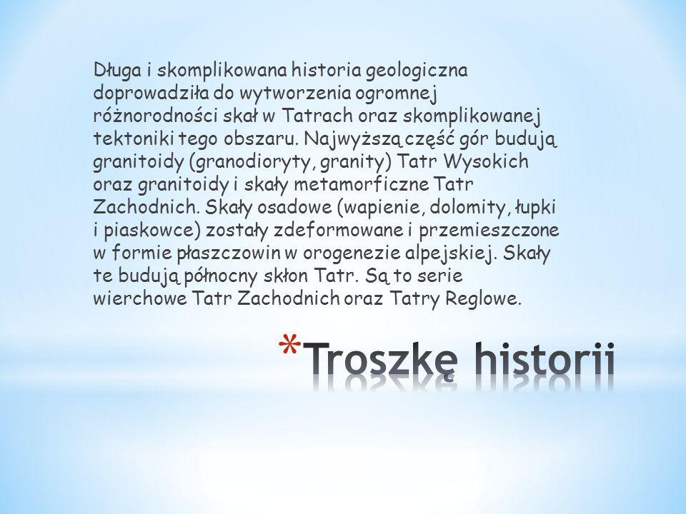 Długa i skomplikowana historia geologiczna doprowadziła do wytworzenia ogromnej różnorodności skał w Tatrach oraz skomplikowanej tektoniki tego obszar