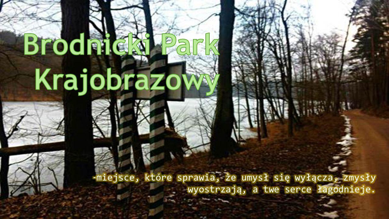 Wybrałam Brodnicki Park Krajobrazowy z wielu powodów.