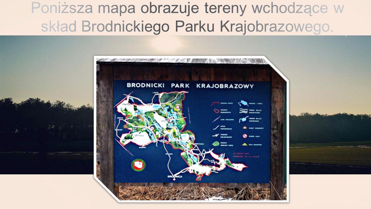 Flora  Jak już wspomniałam flora Brodnickiego Parku Narodowego jest bardzo różnorodna.