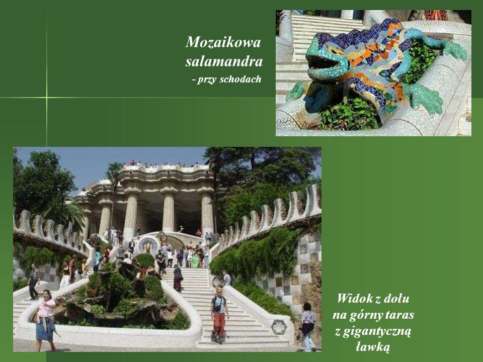 Mozaikowa salamandra Widok z dołu na górny taras z gigantyczną ławką - przy schodach