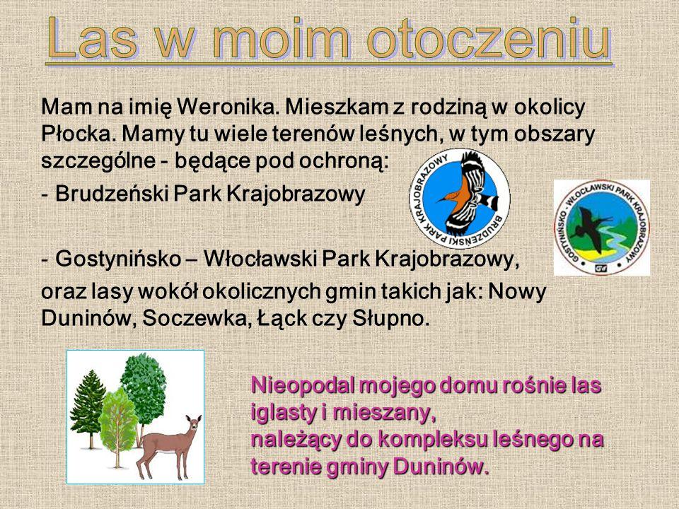 Mam na imię Weronika. Mieszkam z rodziną w okolicy Płocka.