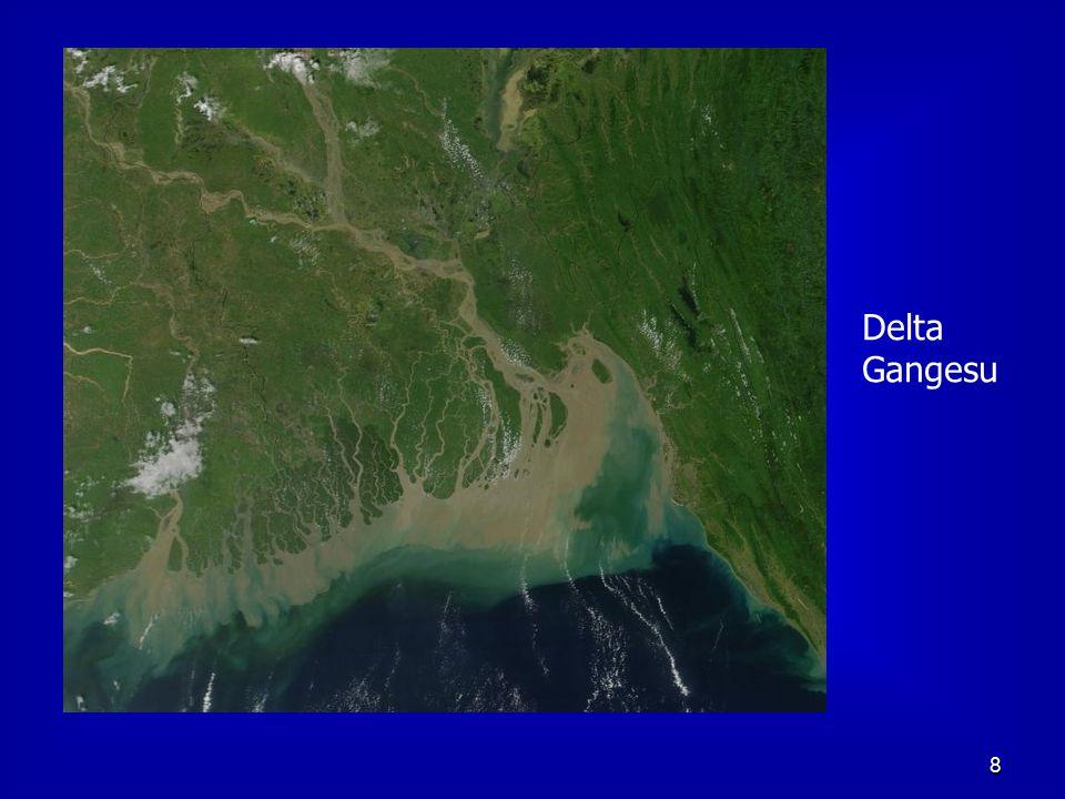 8 Delta Gangesu