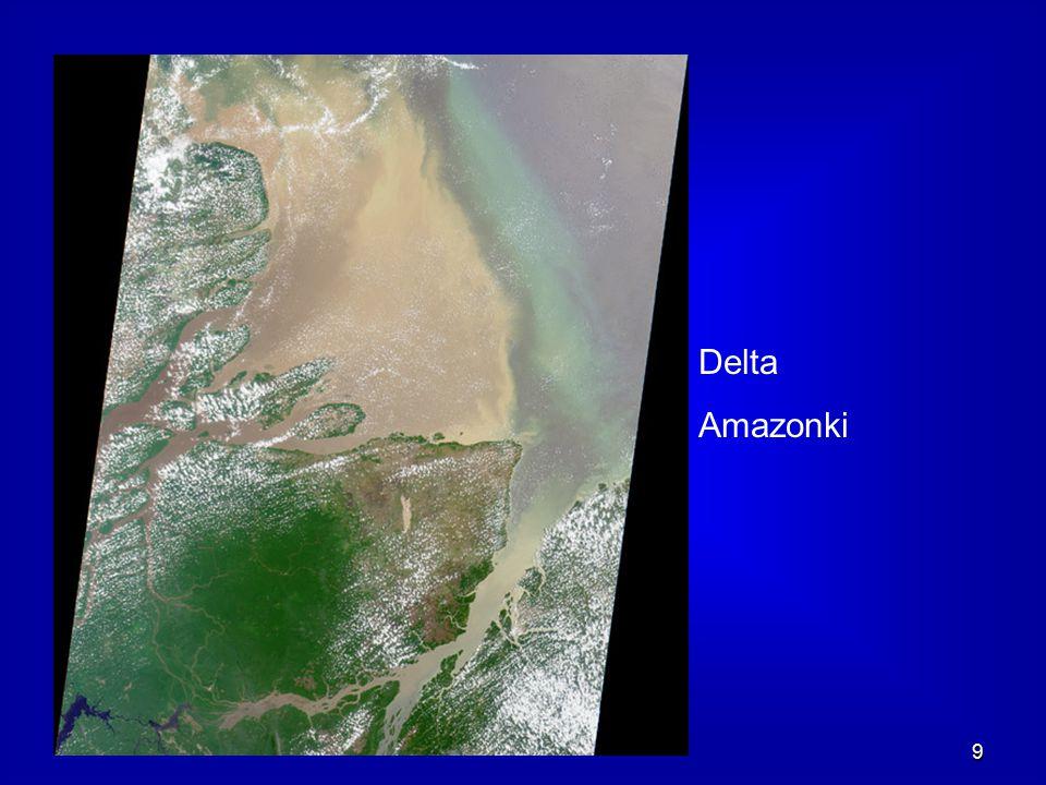 9 Delta Amazonki