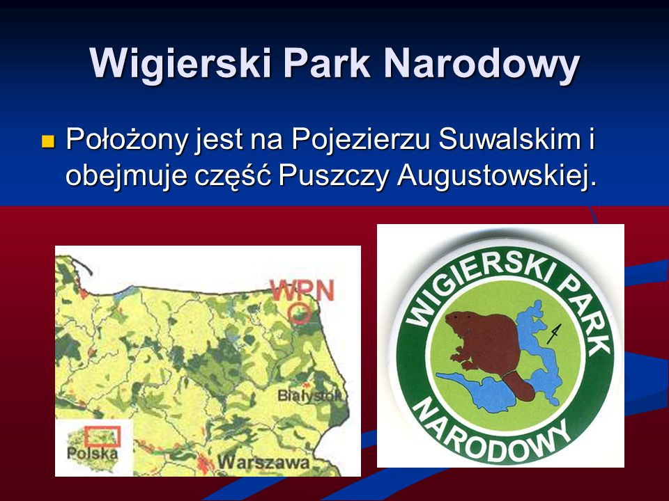 Wigierski Park Narodowy Położony jest na Pojezierzu Suwalskim i obejmuje część Puszczy Augustowskiej. Położony jest na Pojezierzu Suwalskim i obejmuje