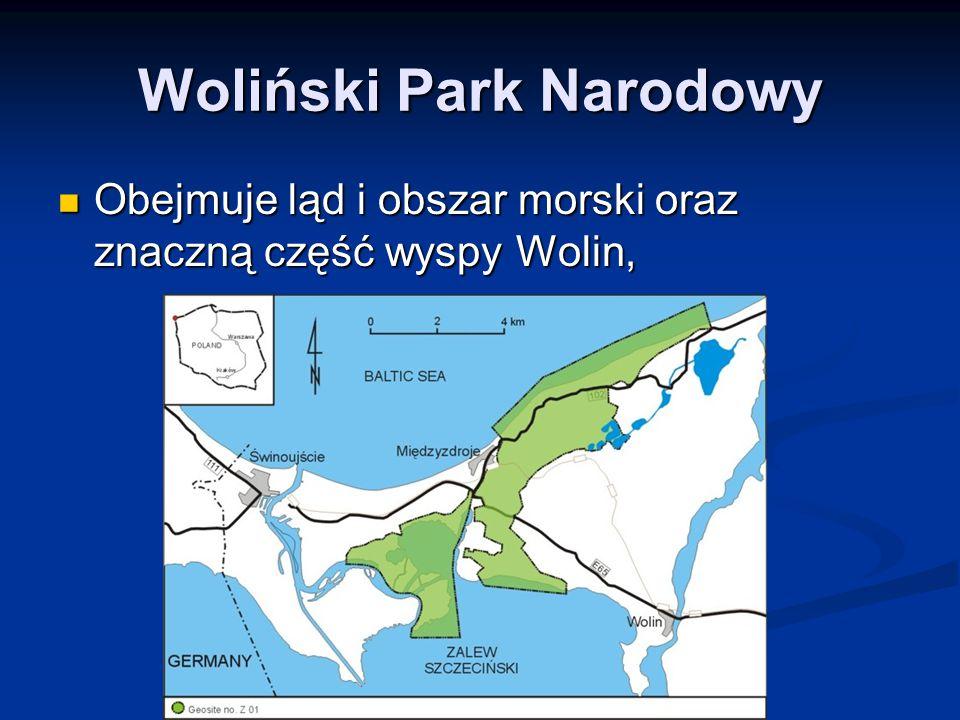 Woliński Park Narodowy Obejmuje ląd i obszar morski oraz znaczną część wyspy Wolin, Obejmuje ląd i obszar morski oraz znaczną część wyspy Wolin,