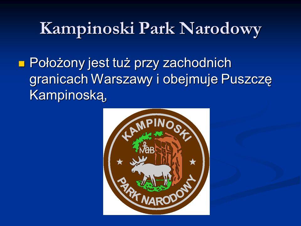 Kampinoski Park Narodowy Położony jest tuż przy zachodnich granicach Warszawy i obejmuje Puszczę Kampinoską, Położony jest tuż przy zachodnich granica