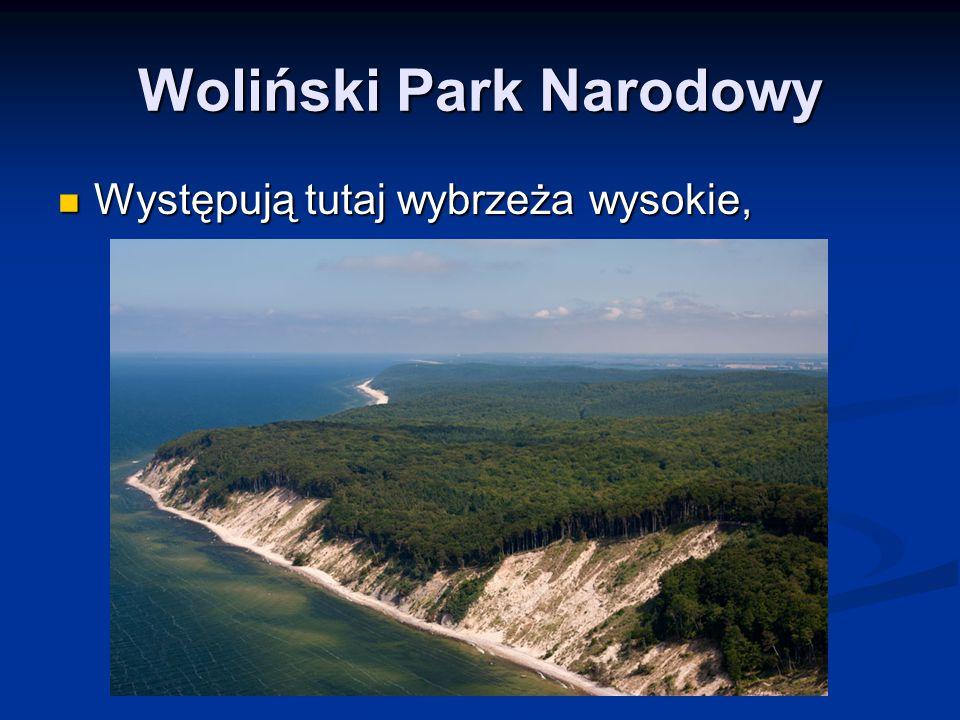Woliński Park Narodowy Występują tutaj wybrzeża wysokie, Występują tutaj wybrzeża wysokie,