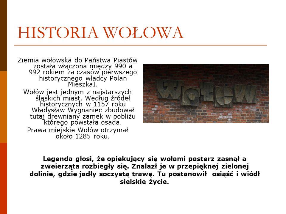 BIBLIOGRAFIA http://www.hermaszewski.com/ http://pl.wikipedia.org/wiki/Wo%C5%82%C3%B3w http://www.wolow.pl/ Wołów, od średniowiecza po erę lotów w kosmos, wydawca folderu Kurier Press Spółka.