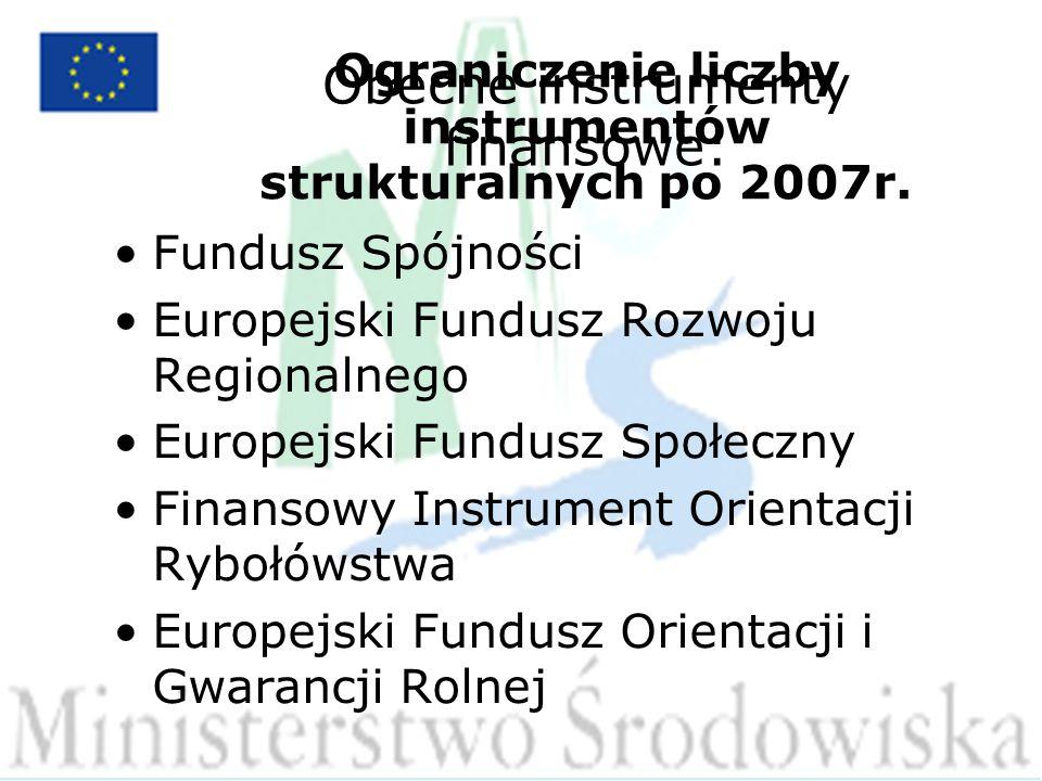 Ograniczenie liczby instrumentów strukturalnych po 2007r.