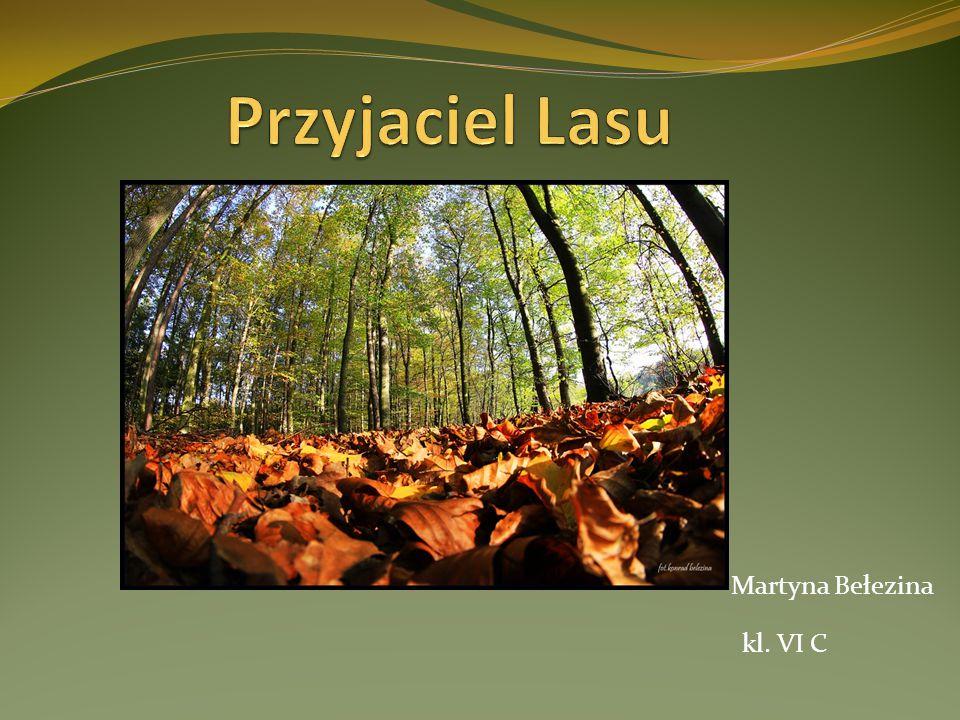 Martyna Bełezina kl. VI C