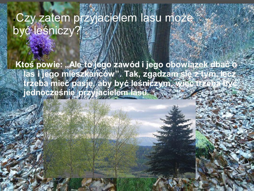 ● Czy zatem przyjacielem lasu może być leśniczy.
