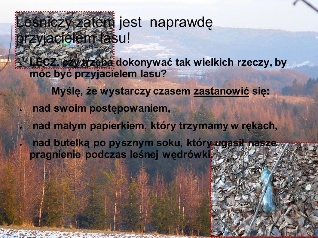 Leśniczy zatem jest naprawdę przyjacielem lasu.