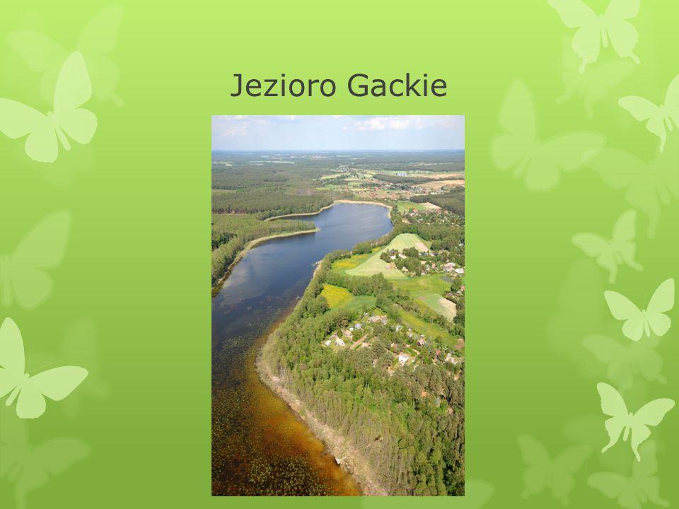 Jezioro Gackie