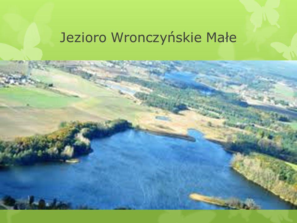 Jezioro Wronczyńskie Małe